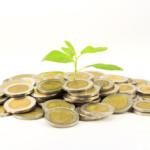 Ochre Business – Business Growth