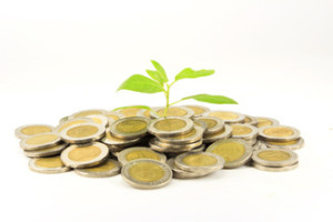 Ochre Business - Business Growth